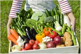 無農薬野菜の良さをすすめる3つの理由!デメリットも公開!