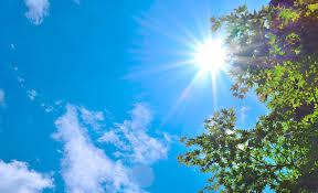 夏の紫外線防止はUVネックガードで決まり!屋外活動を支えます!