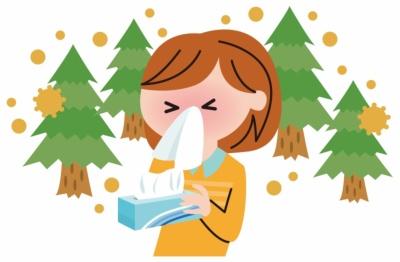 白井田七。茶で始める花粉症対策!悩む人が楽になる為に今から始めよう!