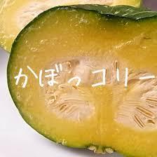 美味安全野菜栽培士の私がすすめる「オイシックス」のお試しセット!